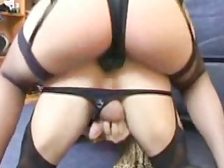 ding-dong wife an sissy spouse