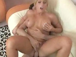 d like to fuck acquires a hardcore titty fuck in
