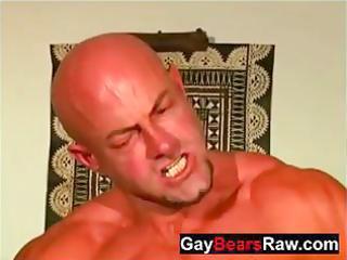 aged raw bears butt fucking